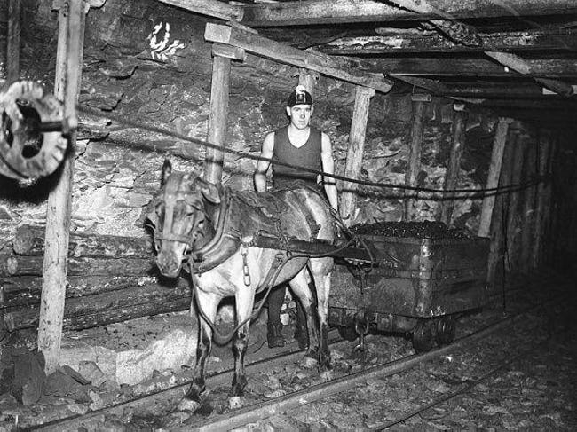 a-coal-miner-and-his-work-pony